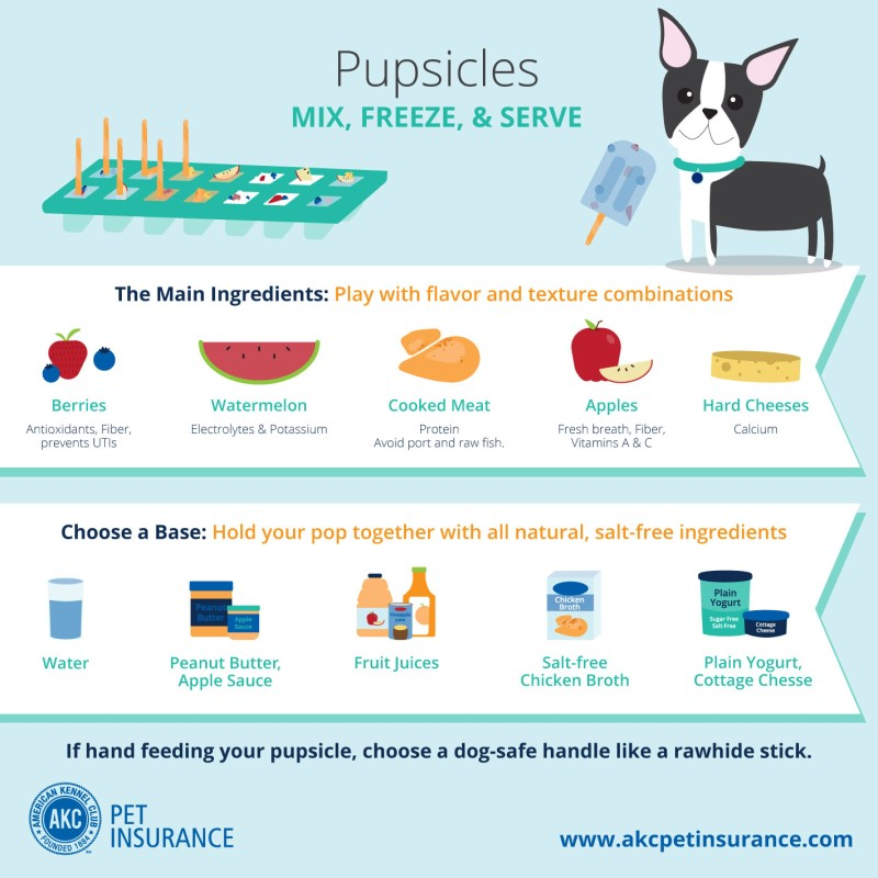 pupsicle recipes dog treats