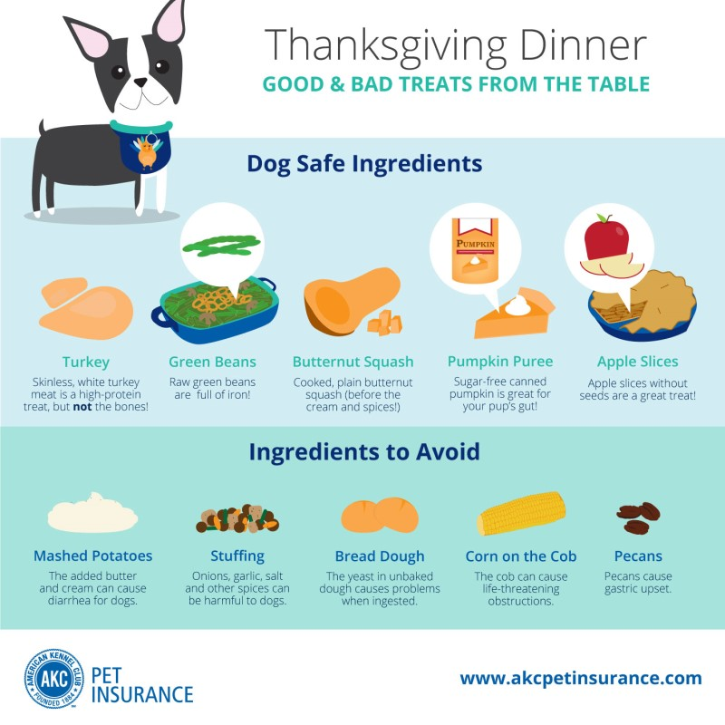 Thanksgiving Recipes With Dog Friendly Ingredients