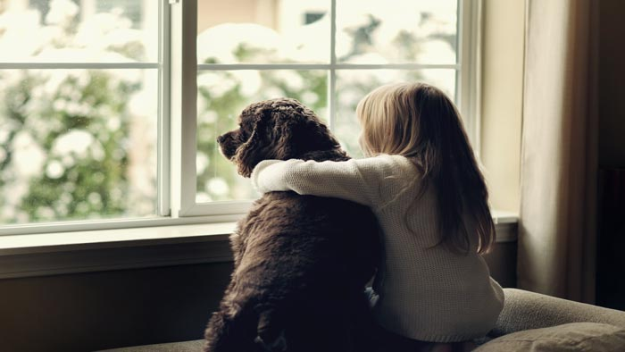 How to Deal with Your Child's Grief of Losing Their Pet