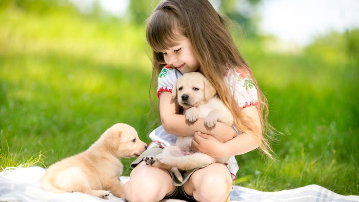 Puppy Fever: Getting Your Kids A Puppy